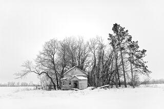 Farmstead House in Shelter Belt