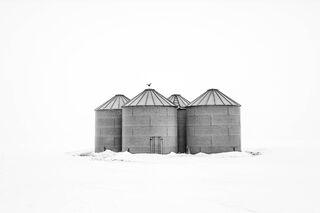 Grain Bins and Pigeon, North Dakota