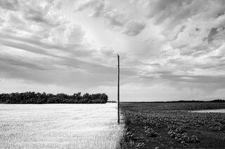 Split Fields, Minnesota