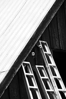 Three Ladders