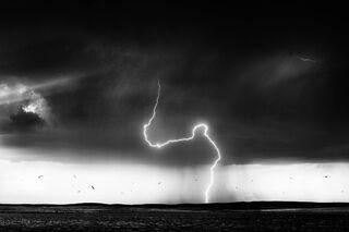 LIghtning and Gulls, Wyoming