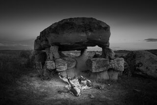 Pronghorn and Rock Structure