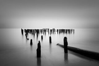 Pilings and Pipe