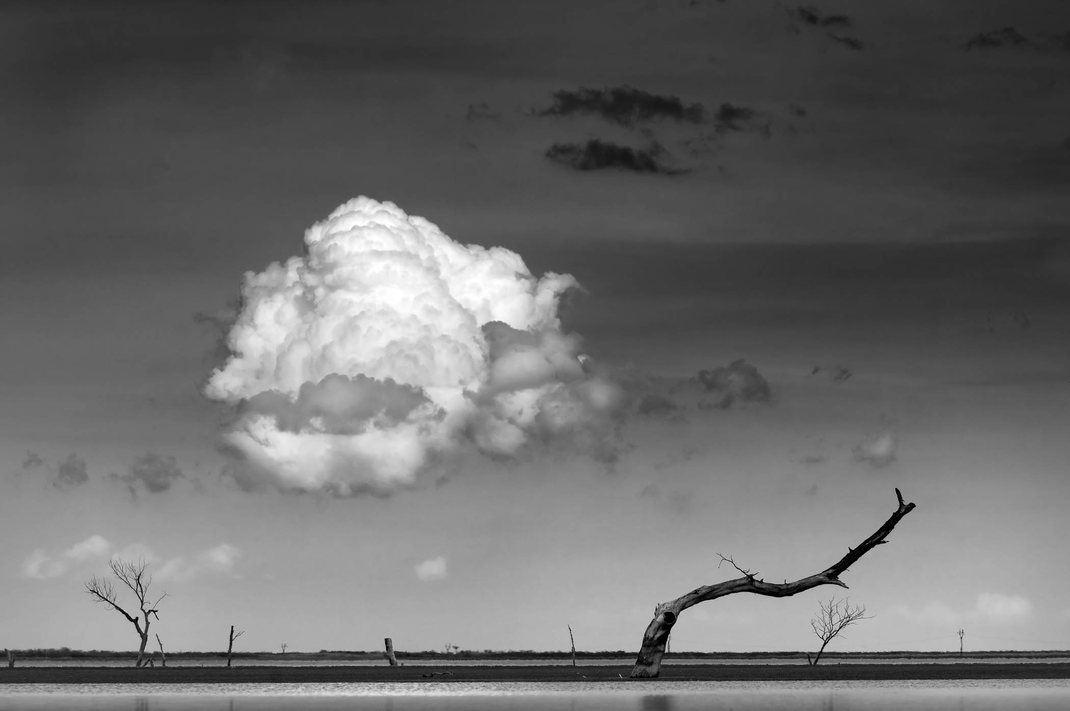 Swatting the Cloud, North Dakota