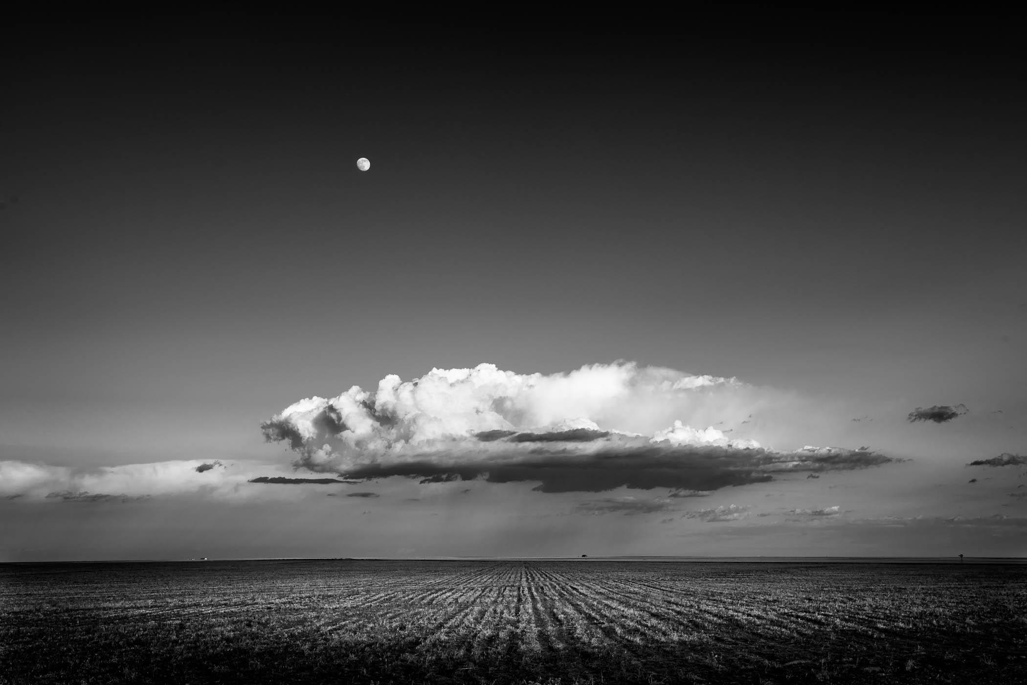 Cloud Over Cut Wheat Field, Colorado
