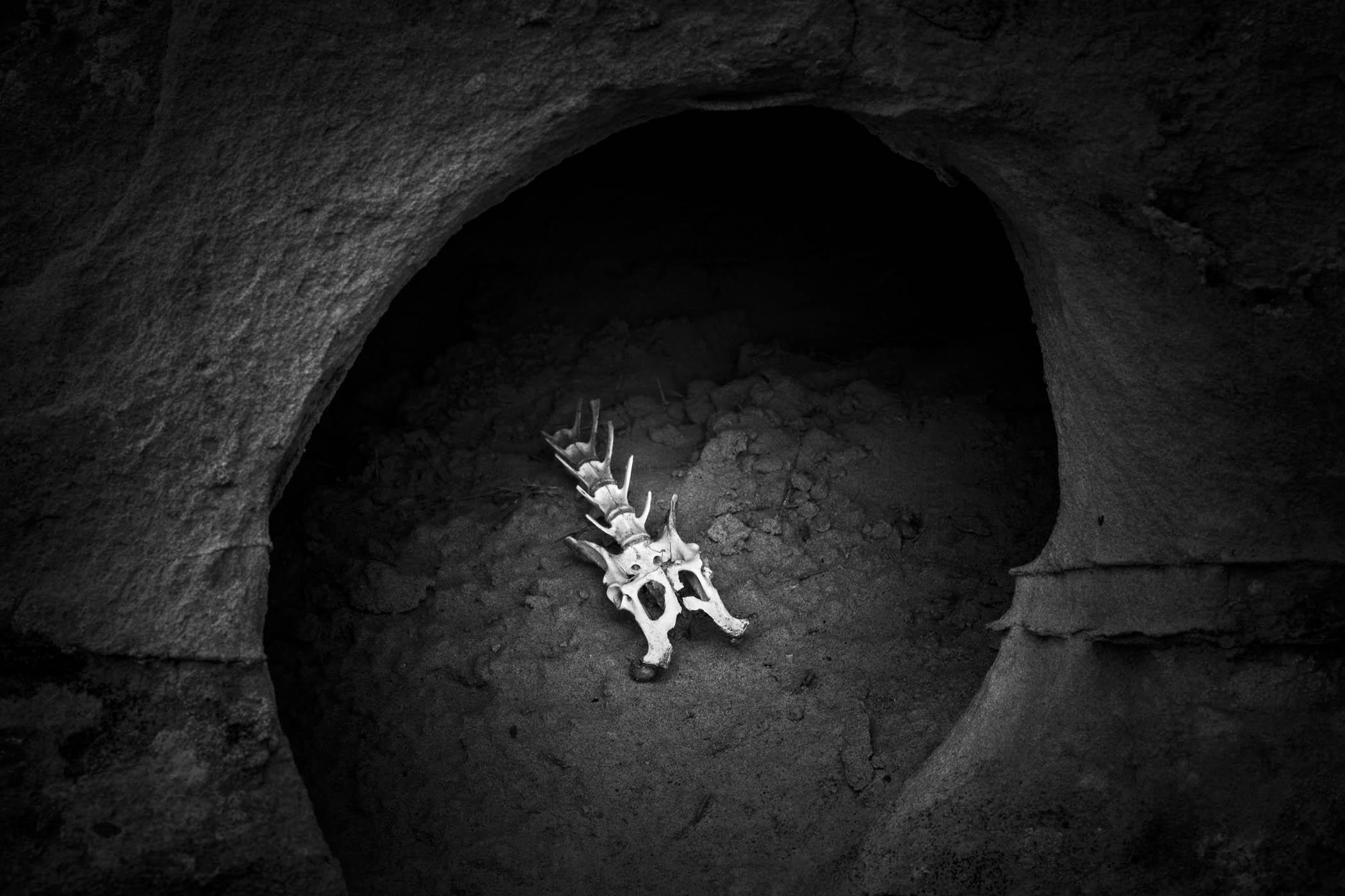 Small Bones, Gebo, Wyoming